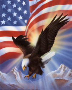 5819American Eagle and Flag II Posters